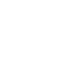 the whole picture logo fav reversed